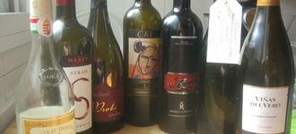 Cata de vinos I